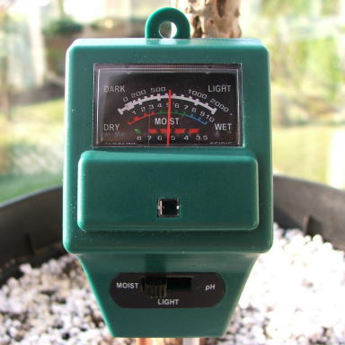 Water, Soil & Daylight Analyser, the ideal way to protect and monitor your plumeria